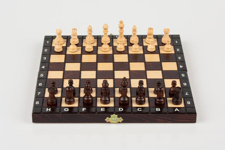 Edukacyjna zabawka z drewna - szachy