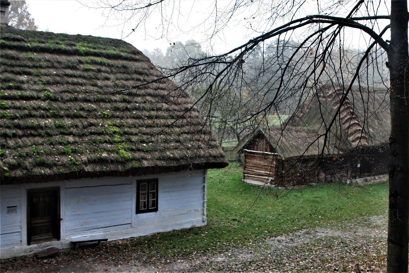 Skansen prezentuje zabudowania wiejskie ze środkowej części Polski